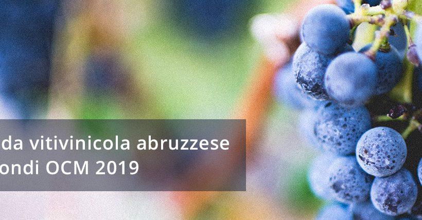 Fotovoltaico in vigna – OCM vino 2019