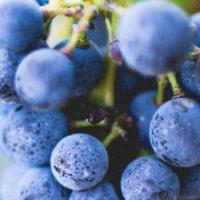 Il fotovoltaico che rende il vino sostenibile
